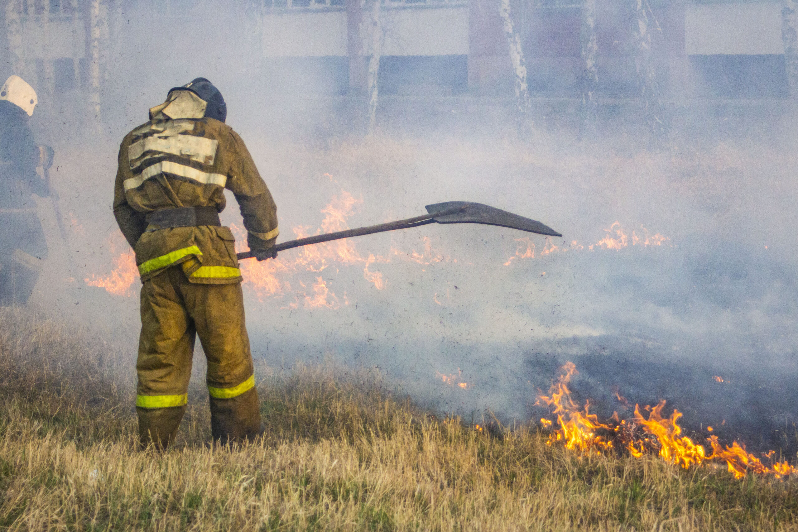 Raging forest spring fires. Burning dry grass, reed along lake. Grass is burning in meadow. Ecological catastrophy. Fire and smoke destroy all life. Firefighters extinguish Big fire. Lot of smok