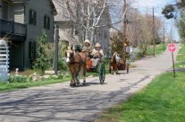 Carriages in Zoar