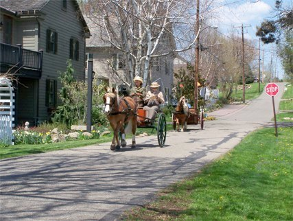 carriages in Zoar
