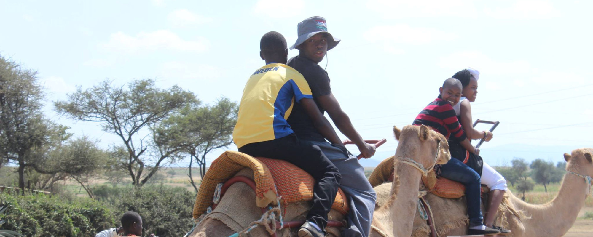 people riding camel