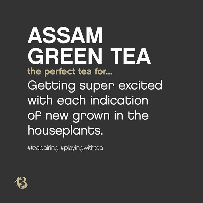 assam green tea :: tea pairing