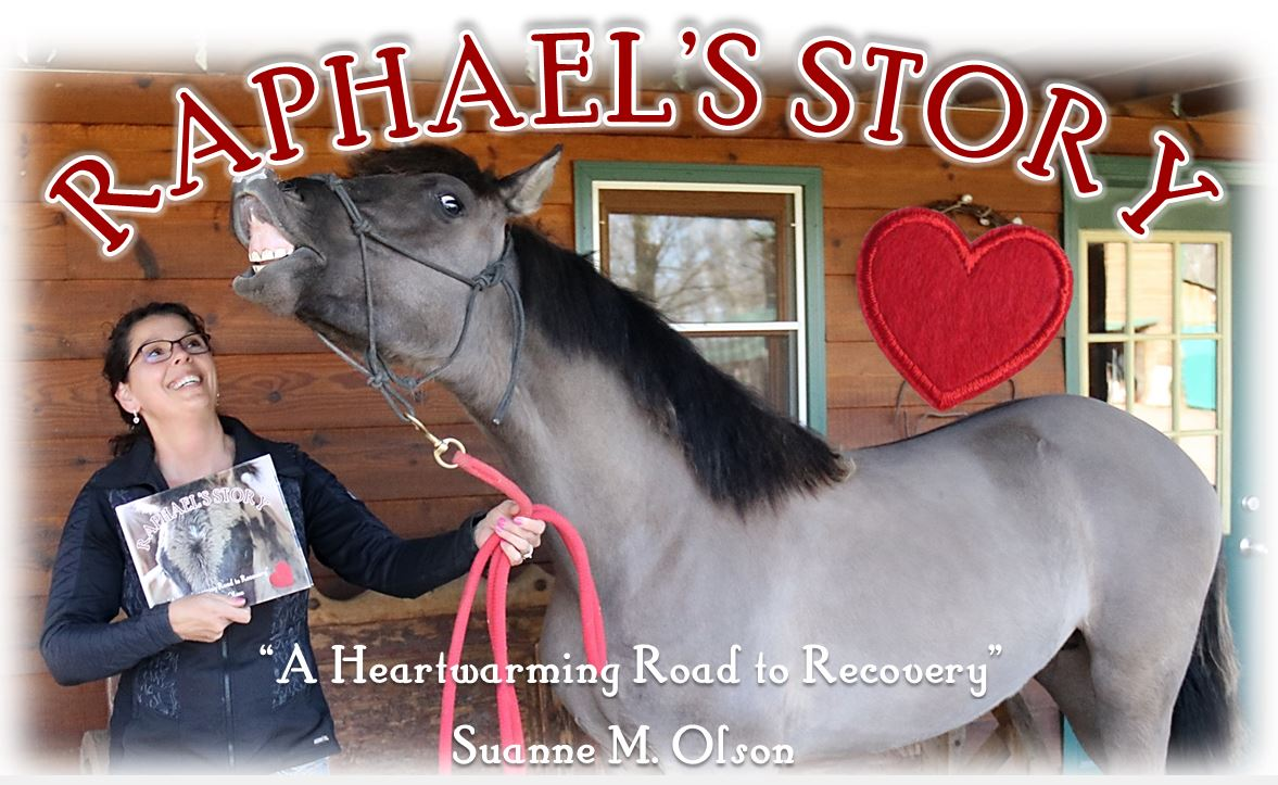 Suanne M. Olson ~ Raphael's Story
