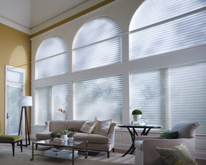 denver specialty shapes window treatments