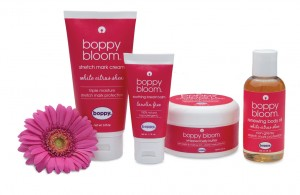 Boppy Bloom