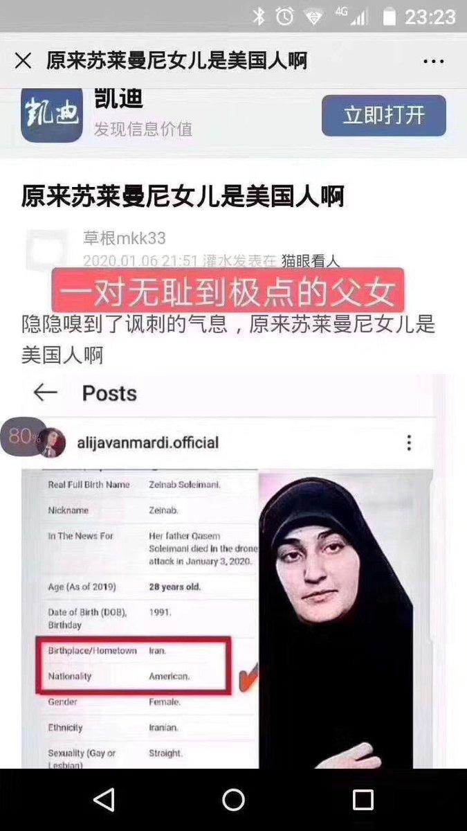 美军斩首的伊朗2号人物苏莱曼尼女儿是美国人
