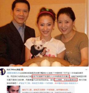 向华强太太怒怼张柏芝 暗示三胎父亲是谁