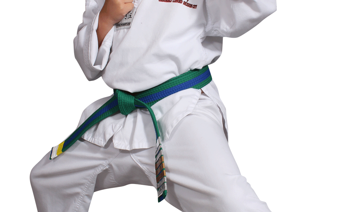 Red Dragon Karate Blog