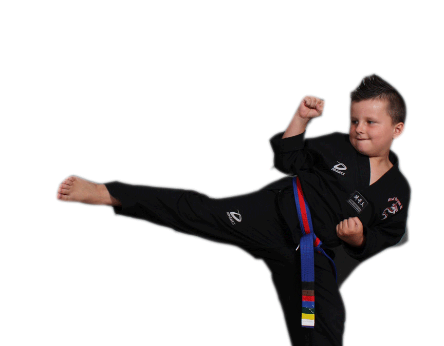 Red Dragon Karate News