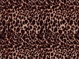 AAI-129-Cheetah