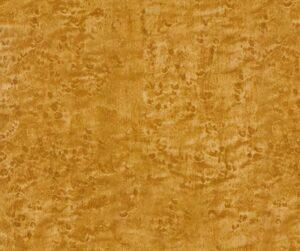 AAI-238-Golden-Birdseye