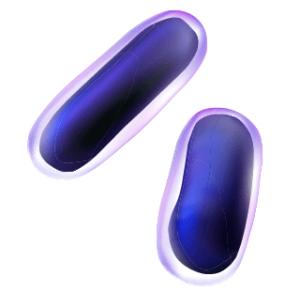 Bactérie en forme de bâtonnet qui représente un système Proacticin™ Z
