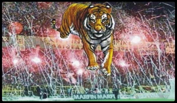 Η ΑΕΚΑΡΑ, ο Τίγρης και το αφηνιασμένο κατεστημένο!