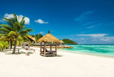call us for more information on the caribbean! 281-377-3488