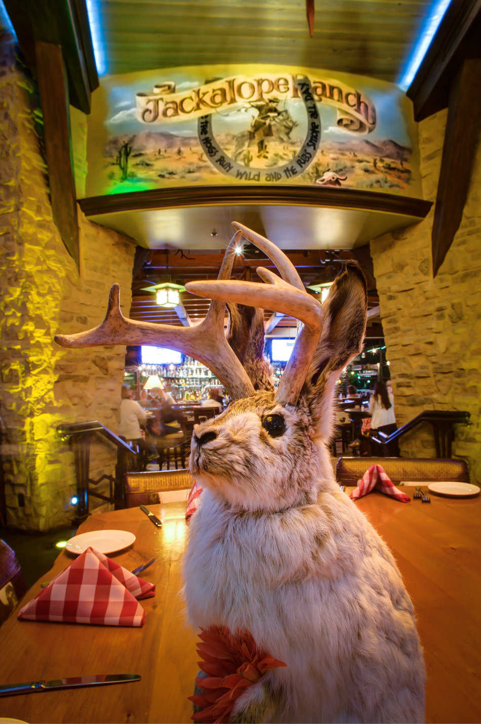 A Stuffed Jackalope