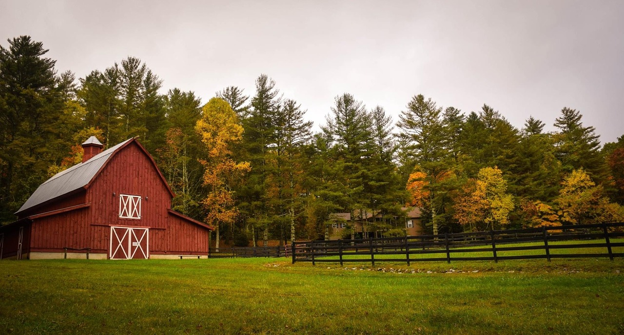 Madison County Farms