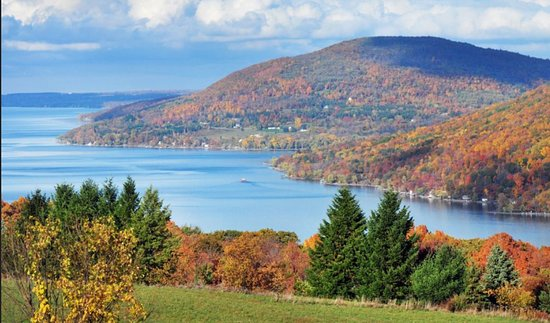 The Finger Lakes