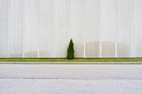 © Tom Ridout
