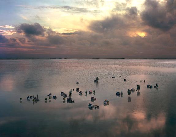 © Thomas Wrede