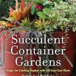 SDOV-Succulent Container Gardens - DLBuntitled