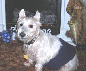 Mac WestieMed Grant Recipient December 2011