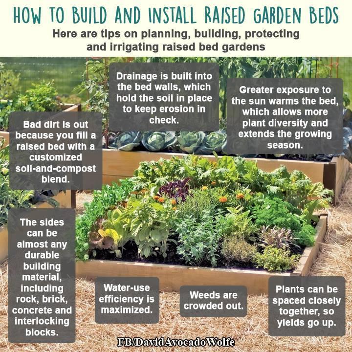 Raised bed garden instructions