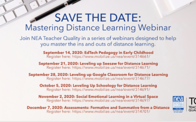 Mastering Distance Learning Webinars