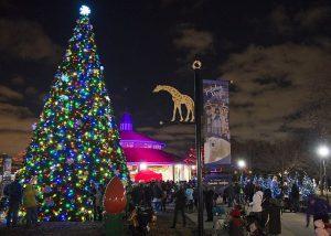 The Talking Tree at Brookfield Zoo's Holiday Magic draws young and old visitors. Brookfield Zoo photo