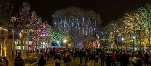 Lincoln Park ZooLights. Todd Rosenberg Photo