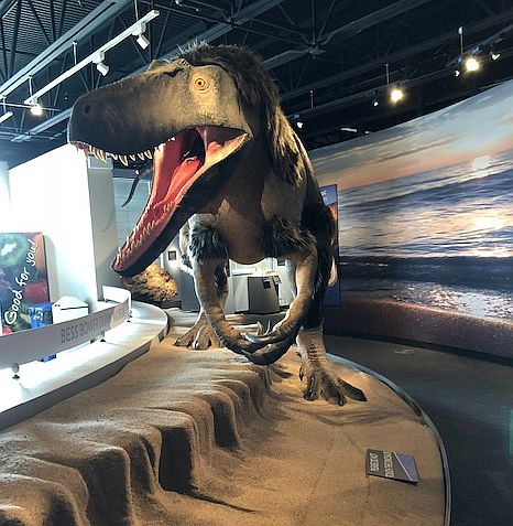 Dryptosaurus dinosaur greets visitors at Lake County Forest Preserves Dunn Museum (J Jacobs photo)