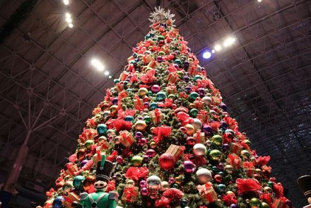 Gaze up at the wonderful Christmas tree.