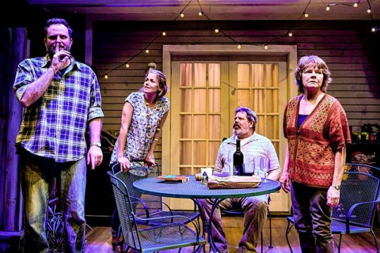"""From left, Joseph Wiens, Cortney McKenna, H.B. Ward and Linda Reiter in Shattered Globe Theatre and Theater Wit's """"The Realistic Joneses."""" (Evan Hanover photo)"""