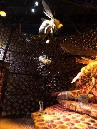 Meet the bees in their hive. (J Jacobs photo