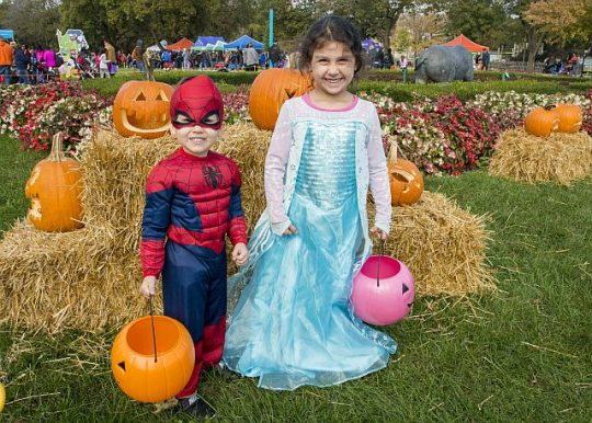 Youngsters like to dress up for Boo at the Zoo presented by Ferrara, (Photo credit Chicago Zoological Society)