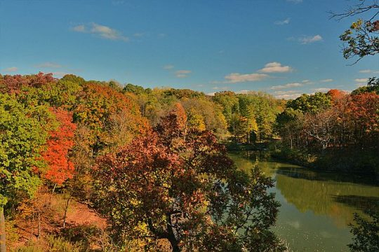 Fall at the Morton Arboretum. (Photo courtesy of MortonArb)