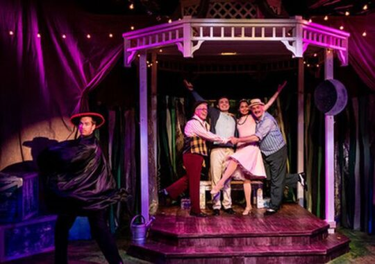 Cast of The Fantasticks at Citadel Theatre. (North Shore Camera Club photo)