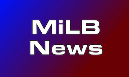 Minor League Baseball Postponed Indefinitely