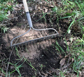 Mineral Dirt 180