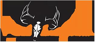 Ani-Logics Logo