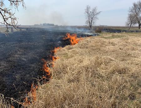 field burn