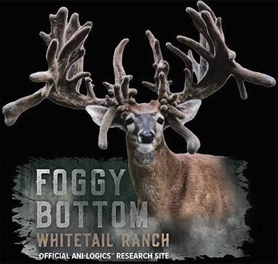 foggy bottom whitetail ranch