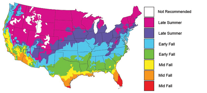 When to Plant Map-Brassica Blend
