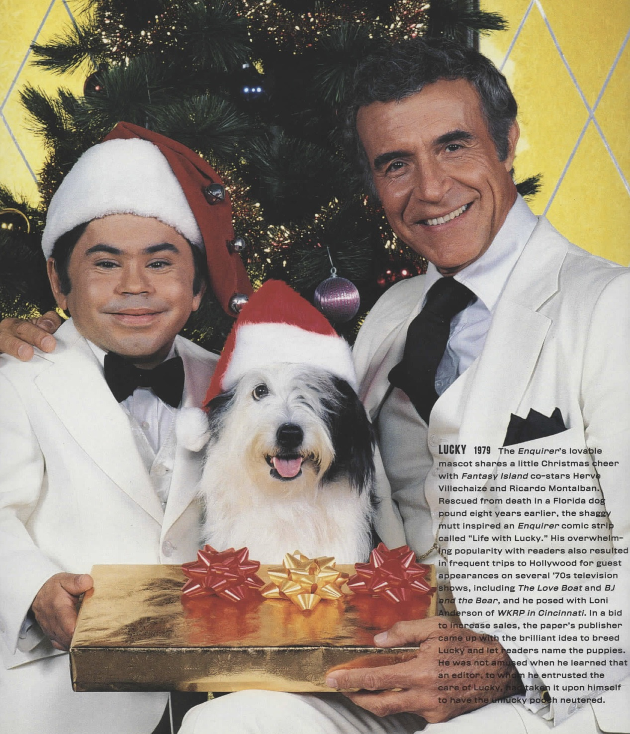 fantasy island funny holiday picture