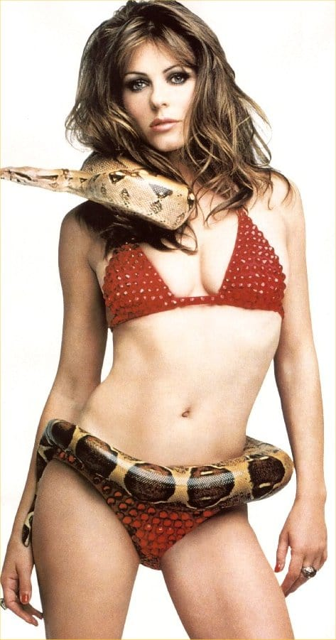 elizabeth hurley snake photo red bikini sexy gorgeous