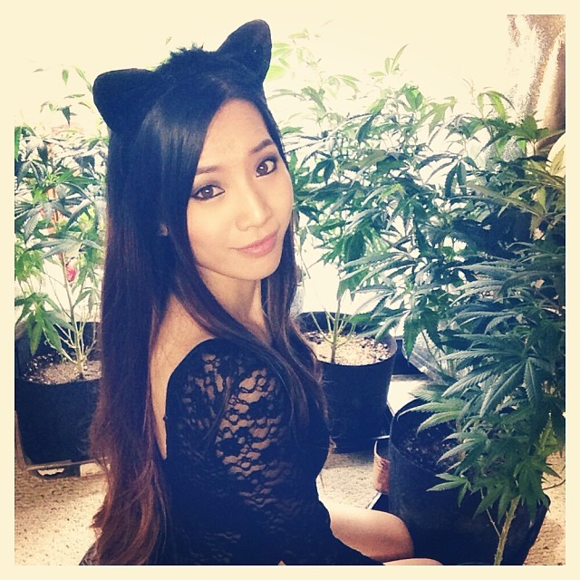asian girl with cat ears costume and weed plants