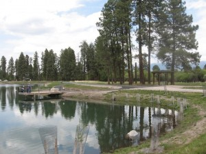 Pine Grove Pond Photo