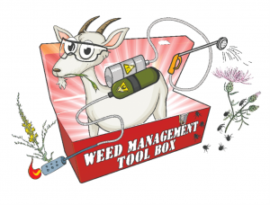 Goat-Tool-Box
