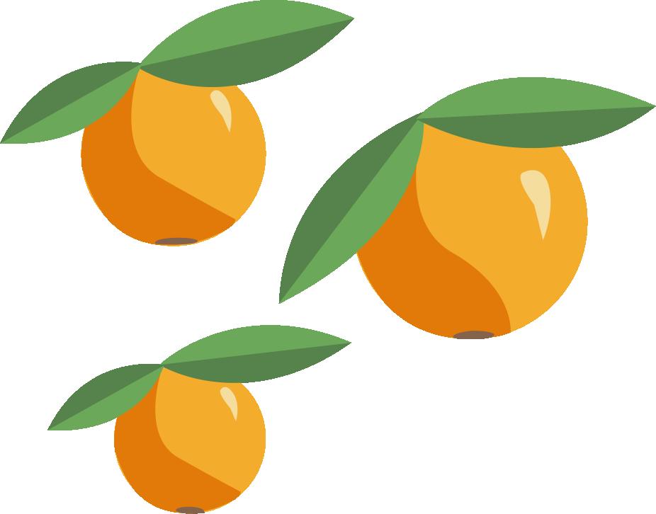 Programs Used: Illustrator