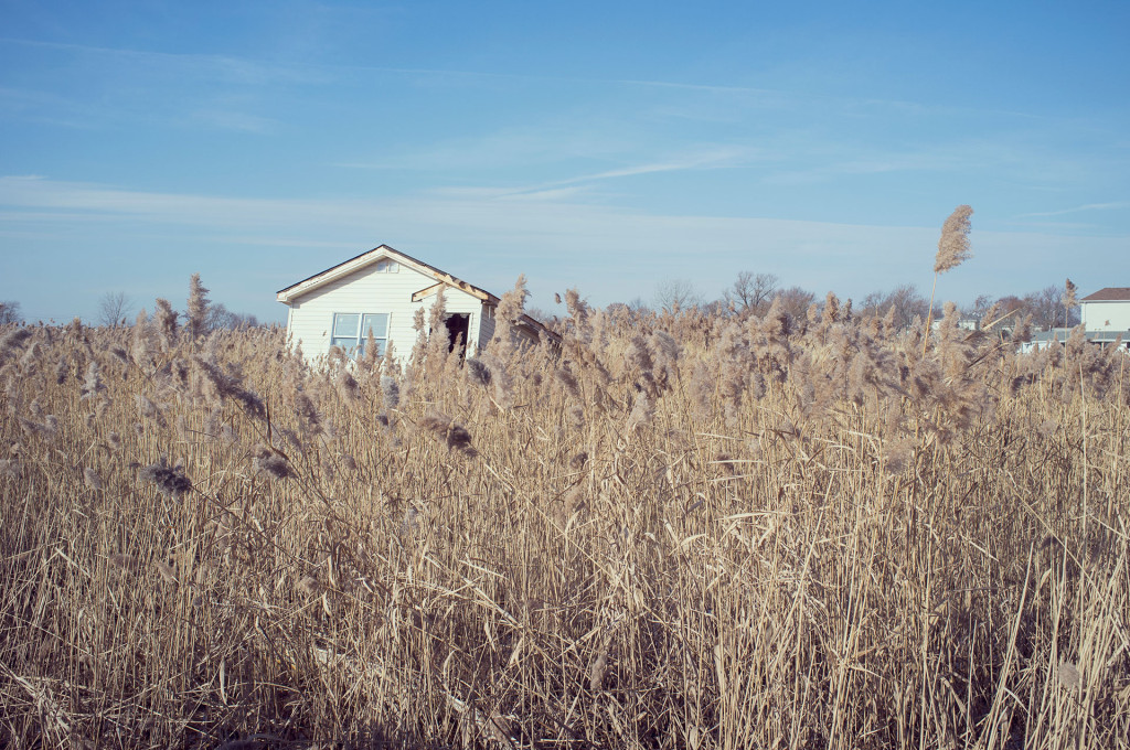 Andrew-Link-Photography-Hurricane-Sandy-3