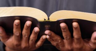 Young man's hands holding a Bible