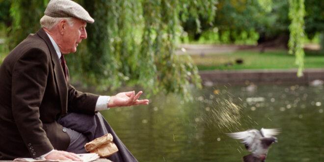 Elderly man feeding pigeons in park